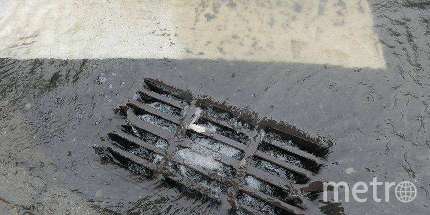 """Дождь. Фото Василий Кузьмичёнок, """"Metro"""""""