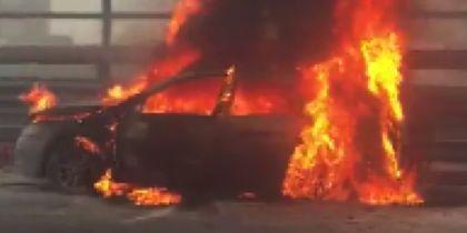 На КАД дотла выгорел автомобиль. Фото Все - скриншот соцсети.