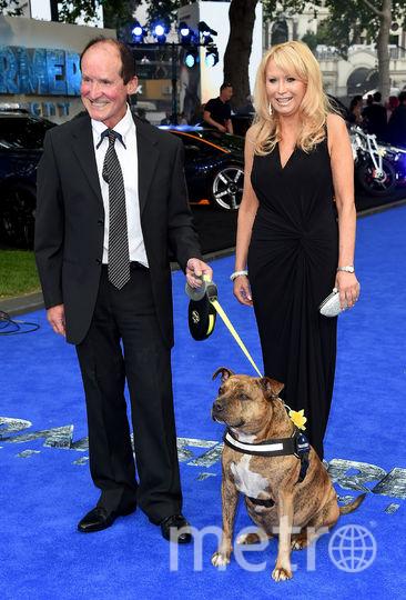 На премьеру Трансформеров-5 пришла собака Фрейя, снявшаяся в кино. Вместе с новыми хозяевами. Фото Getty