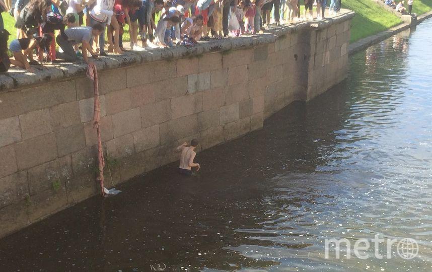В Петергофе мужчина бросился спасать тонущую белку. Фото «ДТП и ЧП | Санкт-Петербург», vk.com