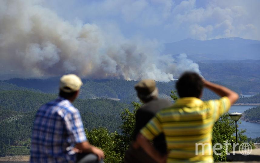ВПортугалии разбился самолет, тушивший лесные пожары