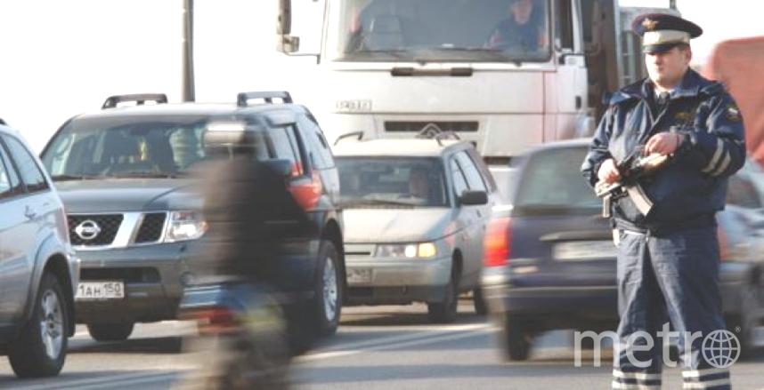 НаПриозерском шоссе полицейские ночью отыскали 4-летнюю девочку