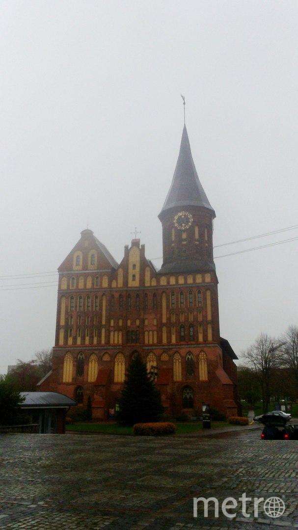 """Кафедральный собор, расположенный на острове Канта, или Кнайпхоф. Фото Анна Егорцева, """"Metro"""""""
