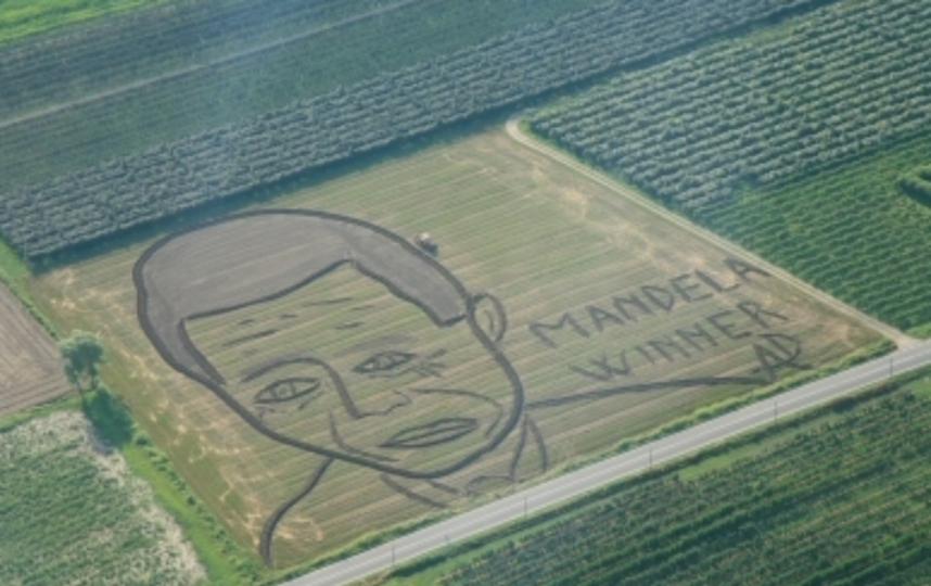 Портрет Нельсона Манделлы в Италии. Фото www.dariogambarin.com.