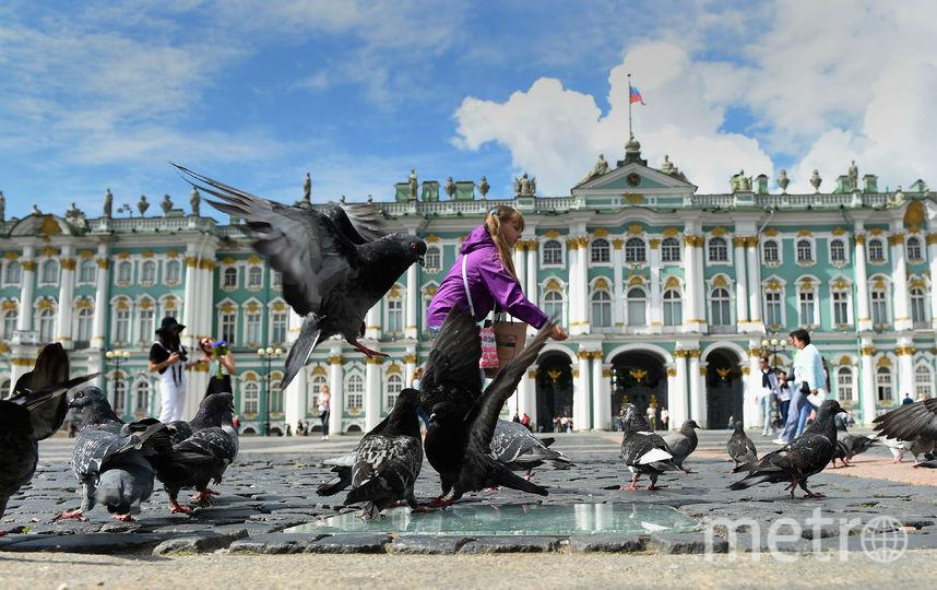 Архив 2016. Санкт-Петербург. Фото Getty