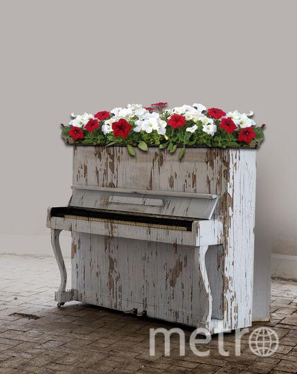 Музыкальные инструменты дизайнеры превратили в произведения искусства. Фото Предоставлено организаторами