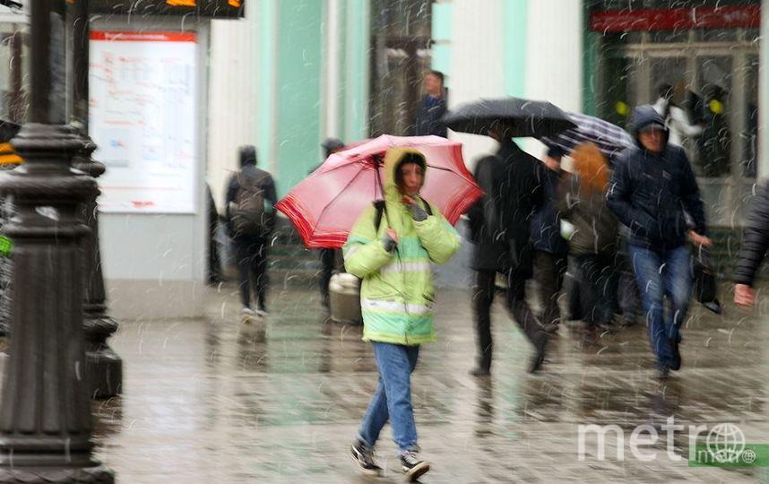 """Штормовое предупреждение объявлено в Москве. Фото Василий Кузьмичёнок, """"Metro"""""""