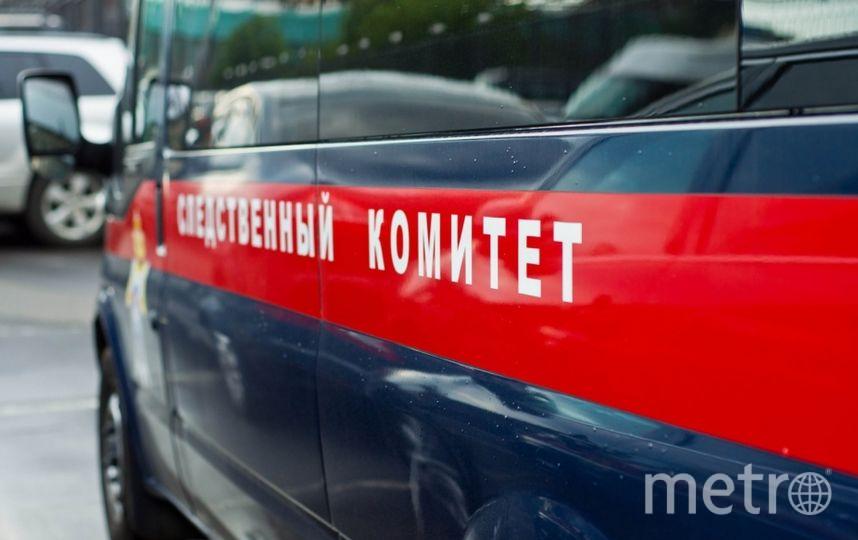 Впарке 300-летия Петербурга двухлетняя девочка провалилась вканализационный люк