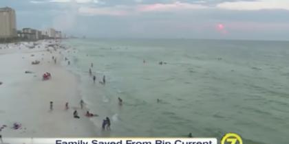 Берег залива во Флориде. Фото Скриншот Youtube