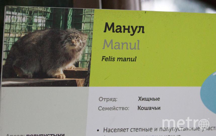 Московский зоопарк.