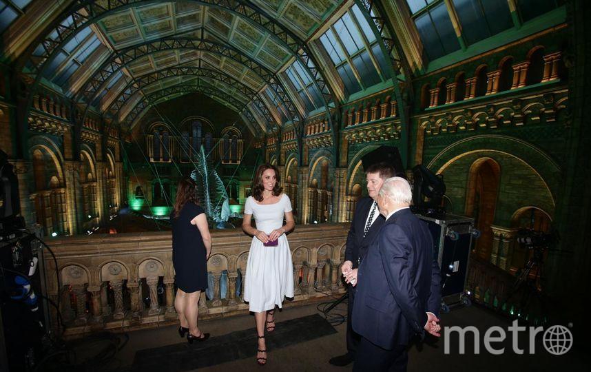 Кейт Миддлтон в Музее естествознания в Лондоне. Фото Getty