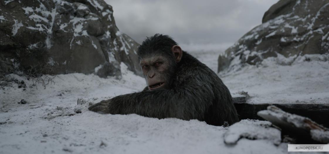 """Кадр из фильма """"Планета обезьян"""". Фото Кинопоиск."""