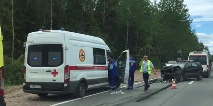 Смертельное ДТП в Петербурге: поездка с дачи закончилась трагически. Фото Скриншот видео.