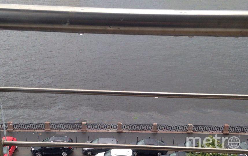 По Большой Невке растянулось нефтяное пятно. Фото vk.com/spb_today