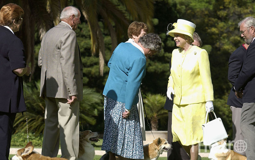 Королева Елизавета II и корги. Фото Getty