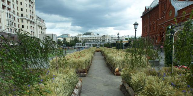 Московские улицы зацвели садами и полями.