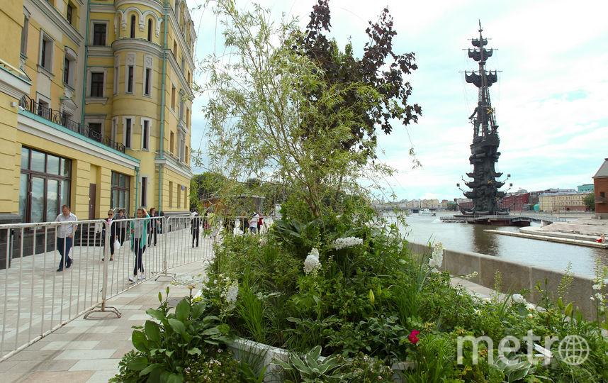 """Московские улицы зацвели садами и полями. Фото Василий Кузьмичёнок, """"Metro"""""""