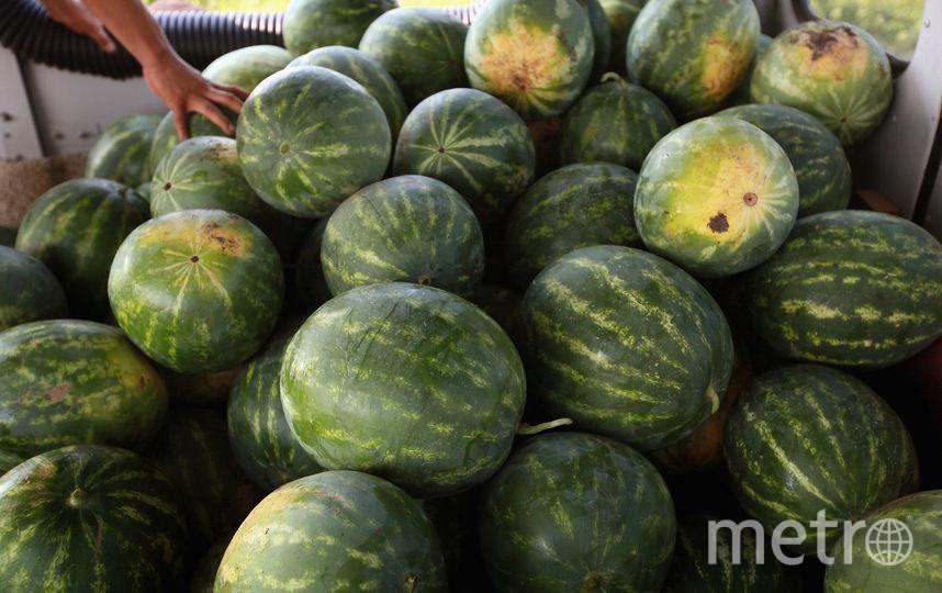 Арбузы. Фото Getty