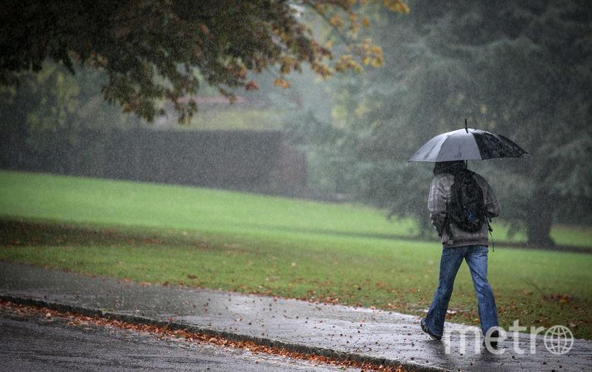 Неделя в Петербурге начнется с дождя и грозы. Фото Getty