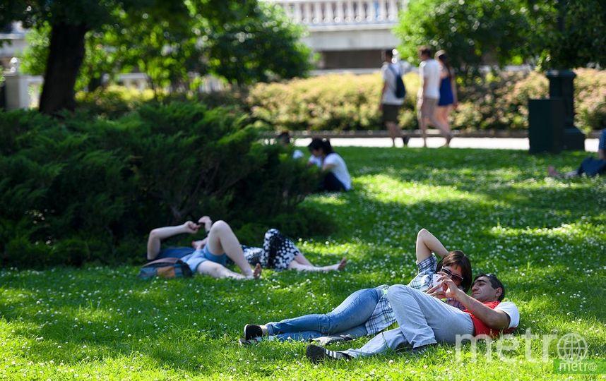 """К концу недели москвичей ждёт 30-градусная жара. Фото Василий Кузьмичёнок, """"Metro"""""""