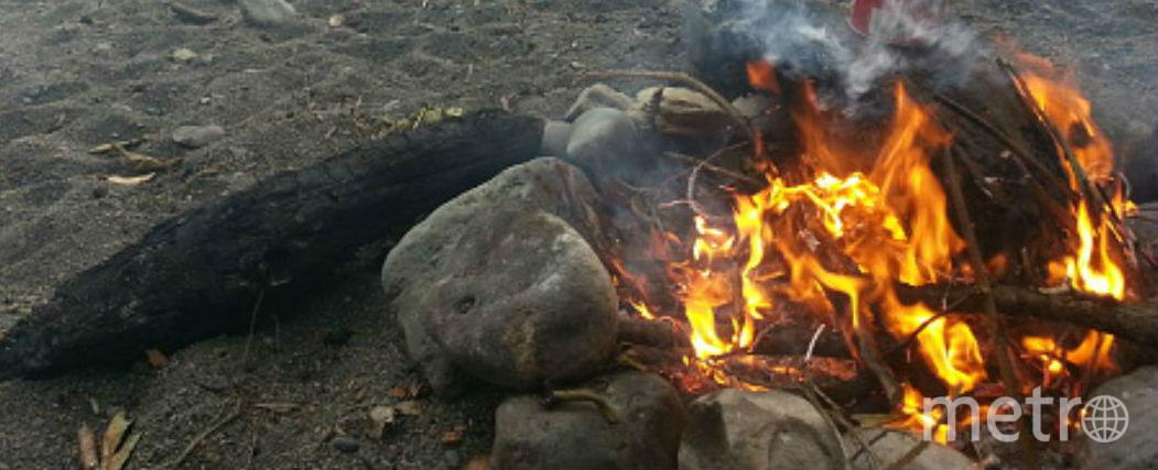 В Петербурге мужчина сжег свою мать на мусорке. Фото Getty