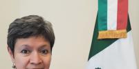 Посол Мексики в России оценила традиционную окрошку