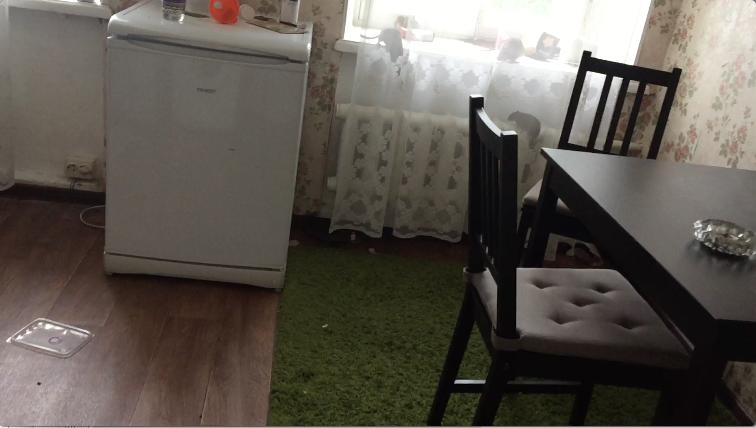 Сразу несколько крыс пришли на кухню в квартиру в Казарменном переулке. Фото видео предоставлено Денисом  Cысолятиным