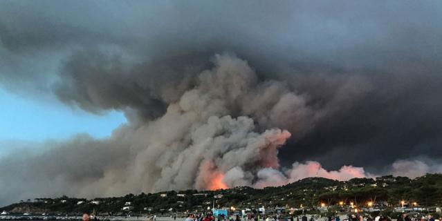 Во Франции бушуют сильные лесные пожары – пугающие фото с места событий