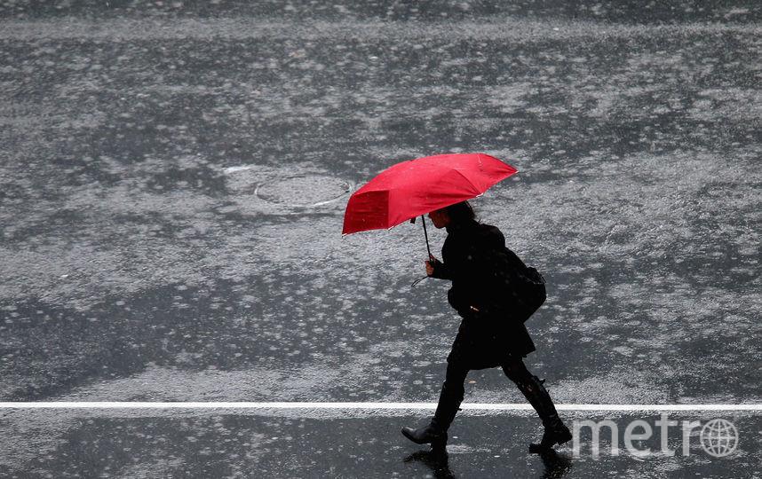 МЧС предупреждает о ливнях и грозах в Петербурге. Фото Getty