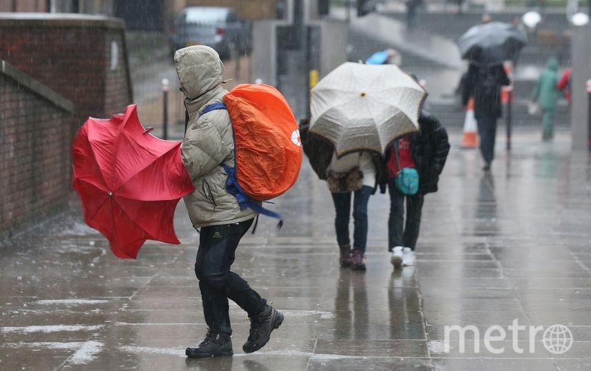 МЧС предупреждает петербуржцев о грозе и ливнях. Фото Getty