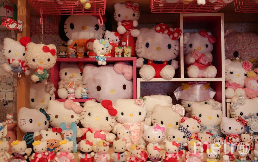 Коллекция игрушек полицейского из Японии побила мировой рекорд. Фото Getty