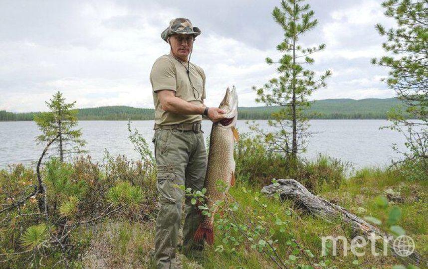 Путин и щука. Такую добычу поймал президент в 2013 году. Фото Getty