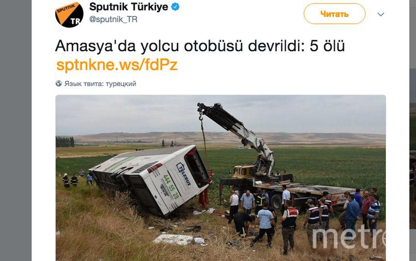 Фото: twitter.com/sputnik_TR.