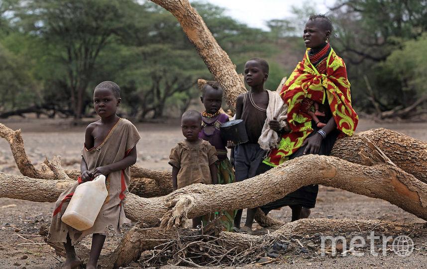 Представительниц племени туркана на севере Кении. Фото Getty