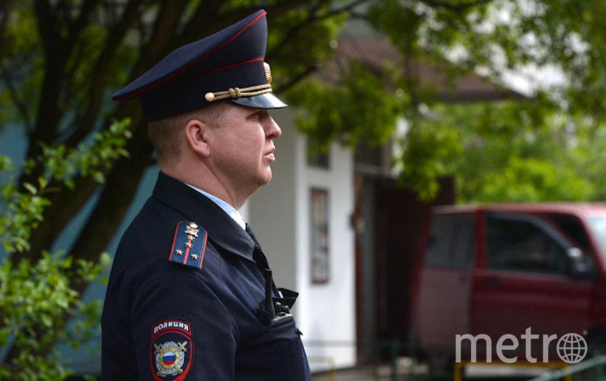 Работники столичной полиции (архивное фото). Фото РИА Новости