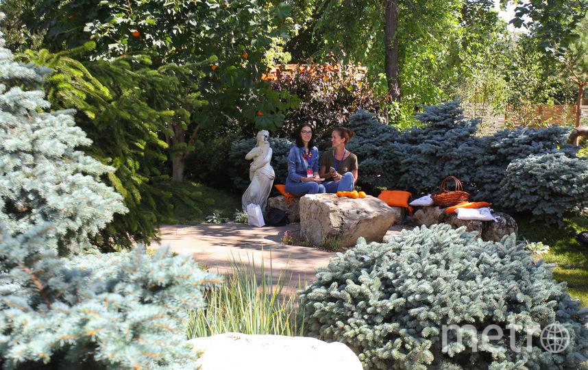 """Контрастные сады выросли на ВДНХ. Фото Василий Кузьмичёнок, """"Metro"""""""