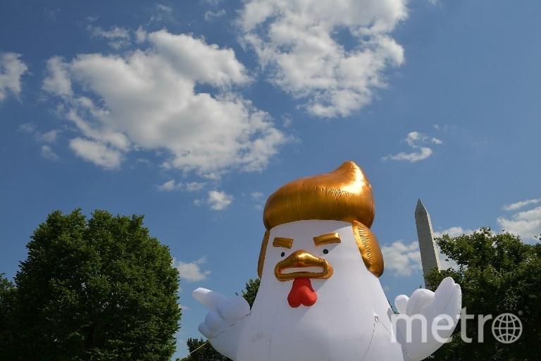 Инсталляция Тарана Брэра в Вашингтоне. Фото AFP