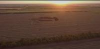 Огромный логотип World of Tanks создал тракторист на поле под Краснодаром
