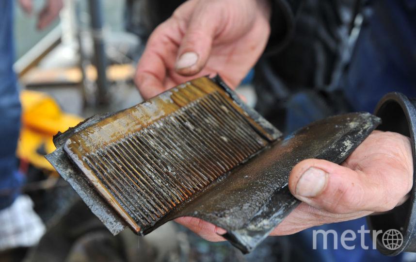 """Археологи находят все новые артефакты. Фото Святослав Акимов, """"Metro"""""""
