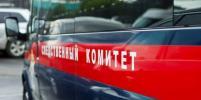 По факту смерти у парадной 16-летней девочки в Петербурге возбудили дело