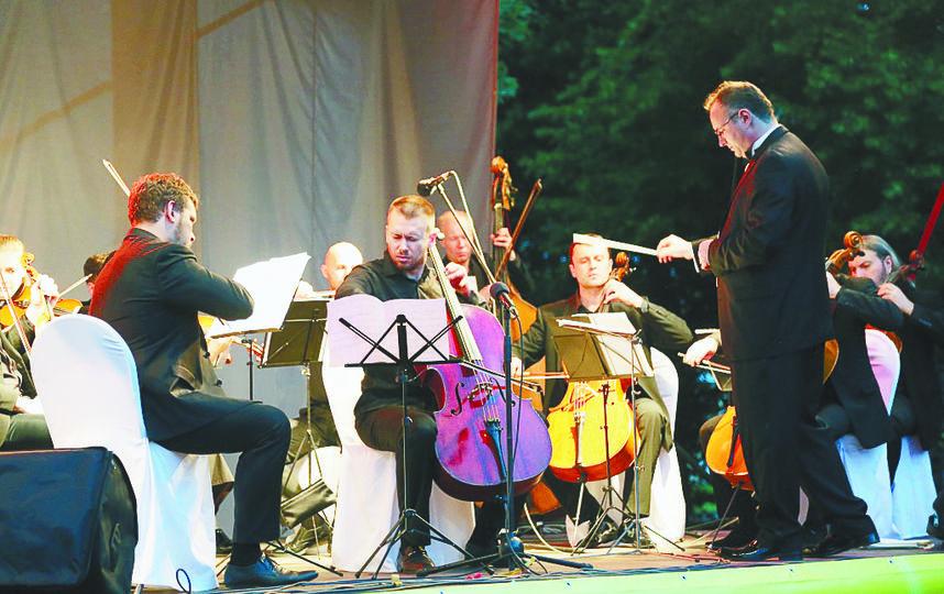 Музыка зазвучит под сенью величественных деревьев | фото предоставлено организаторами.