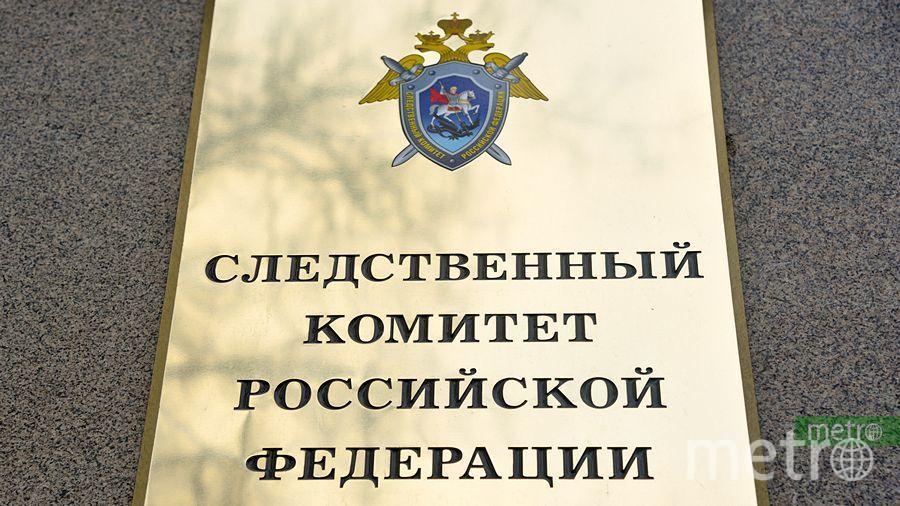 """СК РФ. Фото Василий Кузьмичёнок, """"Metro"""""""