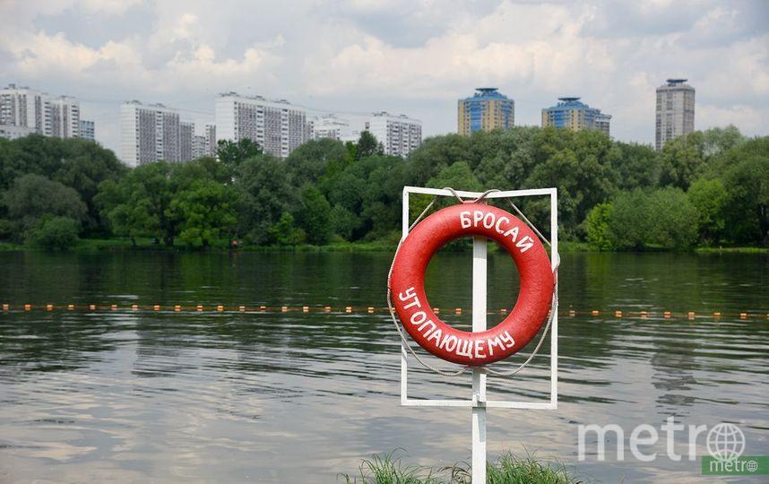 """Пруд в Москве. Фото Василий Кузьмичёнок, """"Metro"""""""