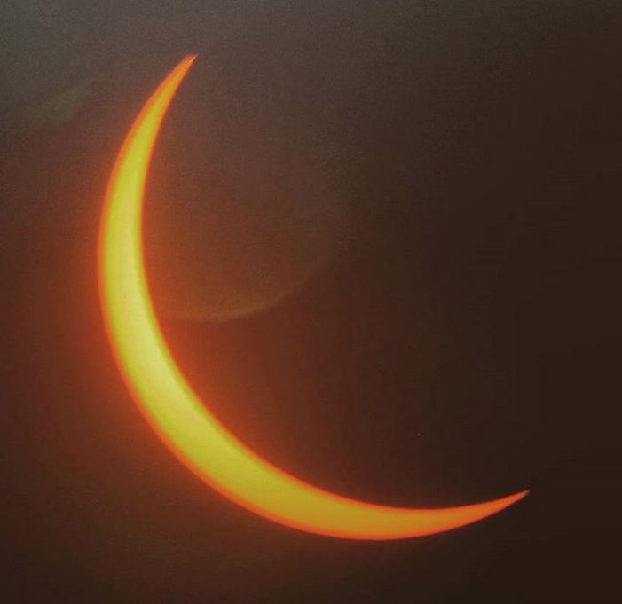 Великое солнечное затмение - 2017. Фото Скриншот www.instagram.com/theuntamedrose/