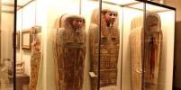 В Петербурге на МРТ обследовали мумию