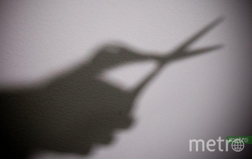 Зловещая тень. Фото Василий Кузьмичёнок