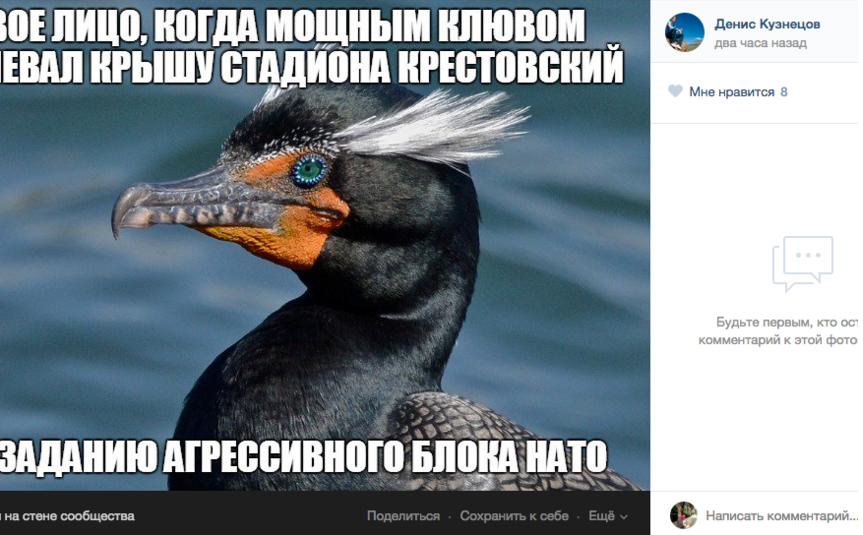 Сергей Шнуров сочинил стихи про бакланов, испортивших крышу стадиона. Фото Все - скриншот  соцсети
