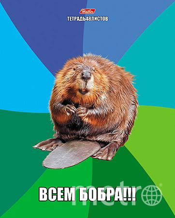 Интернет-мемы перекочевали на обложки тетрадей.