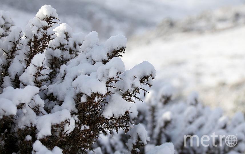 Снег. Фото Getty