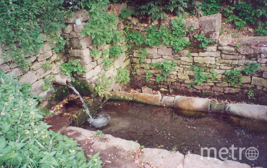 Грунтовые воды. Фото Wikipedia/USchick